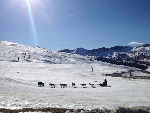 Hondenslee in Andorra