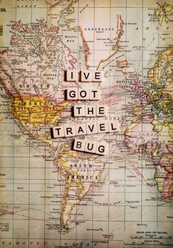 travel-bug